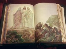 Beautiful illustrations of the Bible stories. There are 6 full colored pictures inside.