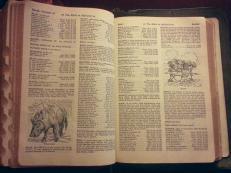 A concordance full of words and names of those who are mentioned in the Bible. It's really extensive and is over 100 pages of information.
