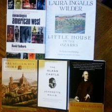 """The pile of """"Non Fiction"""" I found. There were a LOT of books in this category."""
