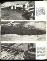 1969 CA Flood_Page_18
