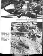 1969 CA Flood_Page_35