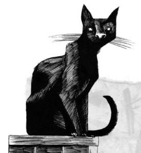 Book Review Coraline Portraits Of M E